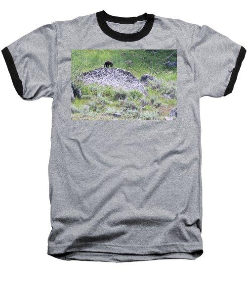 American Black Bear Yellowstone Usa Baseball T-Shirt