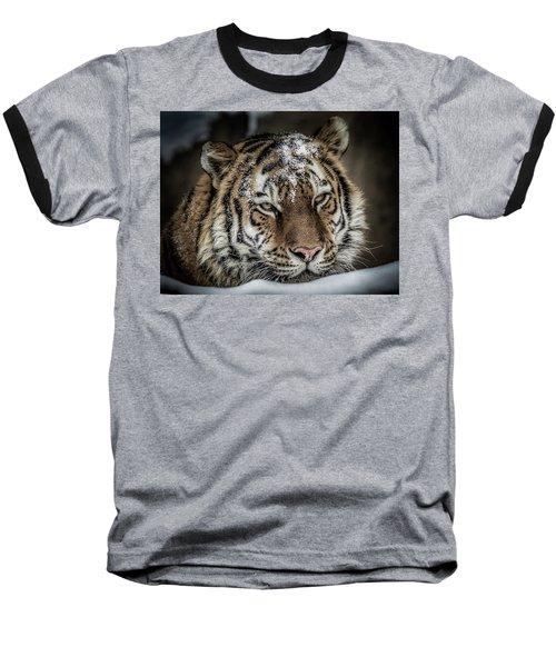 Amur Tiger Baseball T-Shirt