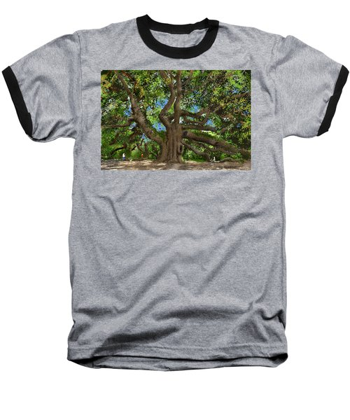 Baseball T-Shirt featuring the drawing Angel Oak by Jim Hubbard