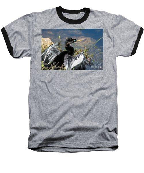 Anhiinga Baseball T-Shirt
