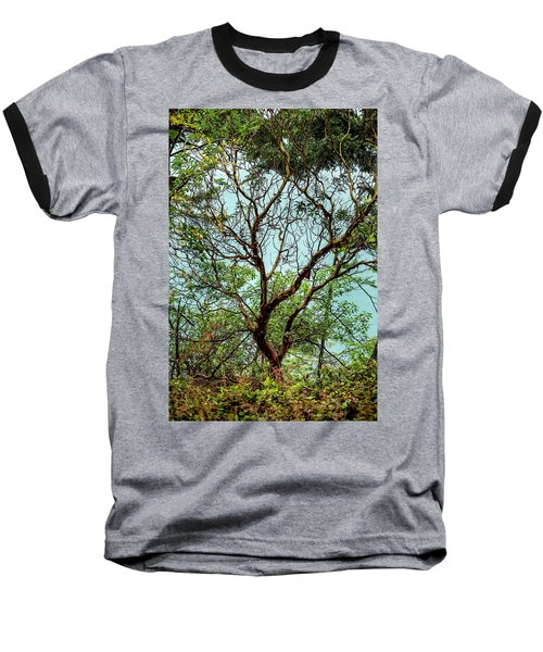 Arbutus Tree Baseball T-Shirt
