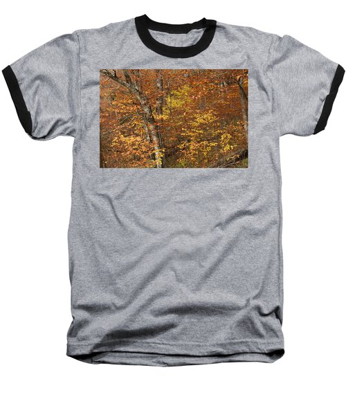 Autumn In The Woods Baseball T-Shirt by Andrew Soundarajan