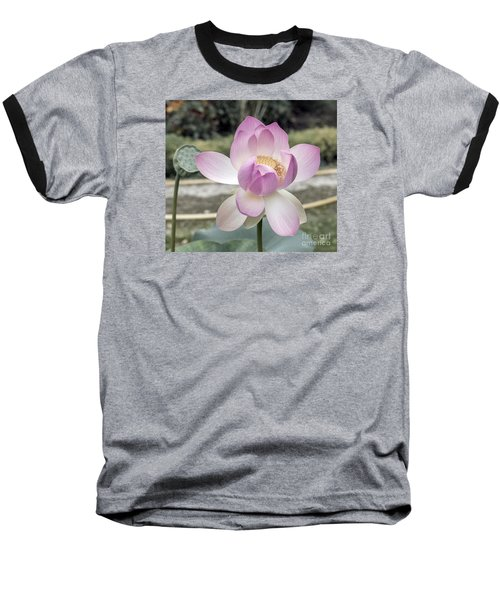 Beautiful Indian Lotus Baseball T-Shirt by Odon Czintos