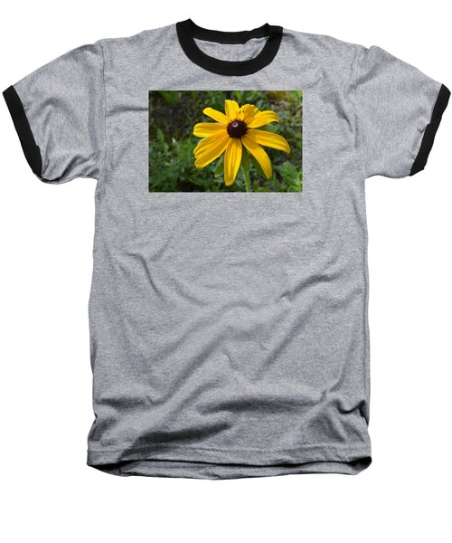 Baseball T-Shirt featuring the photograph Brown Eyed Susan  by Lyle Crump