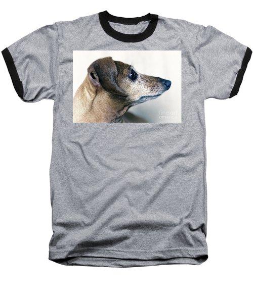 Brownie The Dachshund Baseball T-Shirt