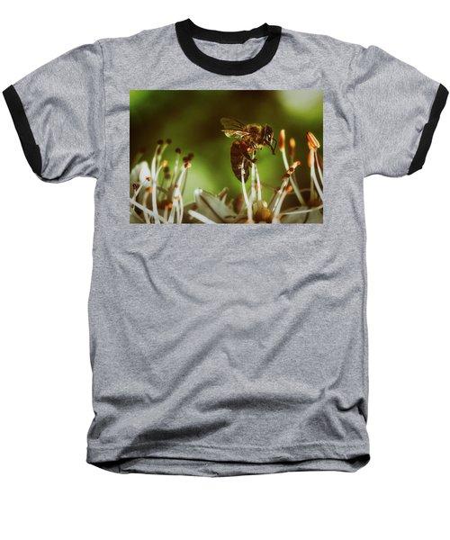 Baseball T-Shirt featuring the photograph Bzzz by Michael Siebert