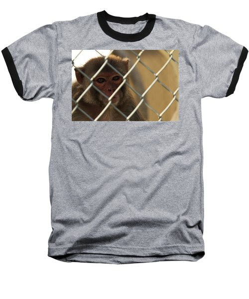 Caged Monkey Baseball T-Shirt