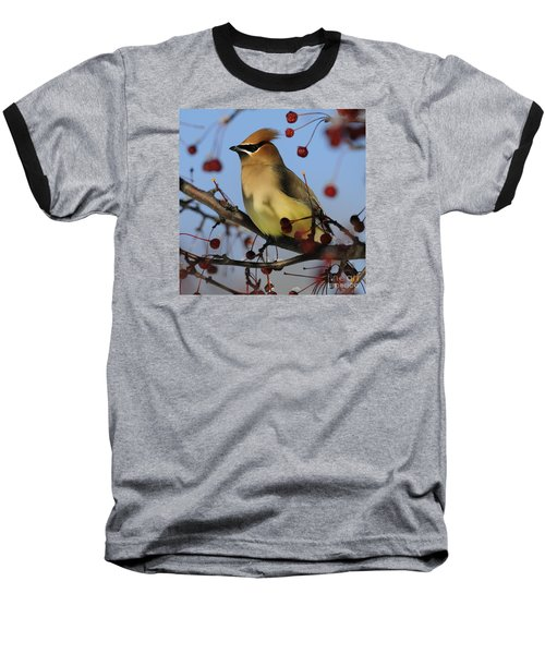 Cedar Waxwing... Baseball T-Shirt