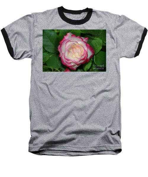 Cherry Parfait Rose Baseball T-Shirt by Glenn Franco Simmons
