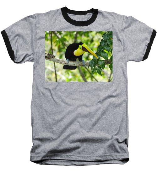 Chestnut-mandibled Toucan Baseball T-Shirt