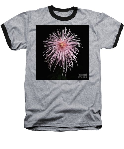 Chrysanthemum 'pink Splendor' Baseball T-Shirt