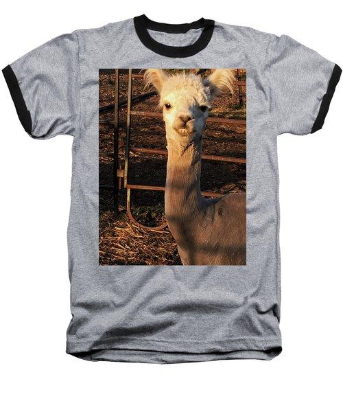 Cria Baseball T-Shirt