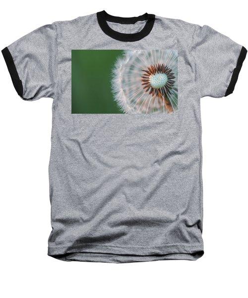 Dandelion Baseball T-Shirt by Bess Hamiti