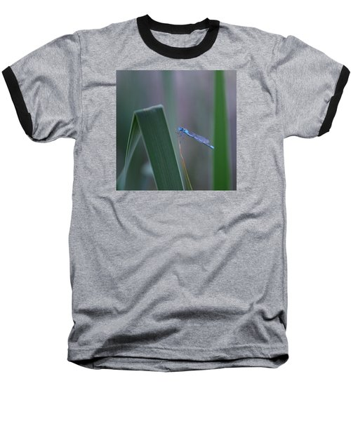 Baseball T-Shirt featuring the photograph Dragonfly by Nikki McInnes