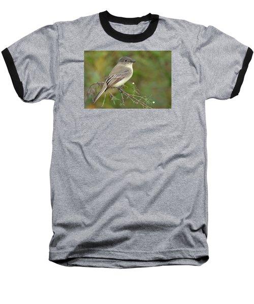 Eastern Phoebe Baseball T-Shirt by Alan Lenk