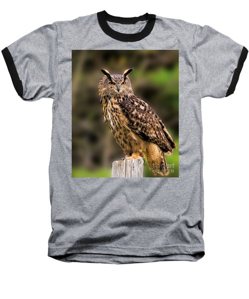 Eurasian Eagle Owl Perched On A Post Baseball T-Shirt