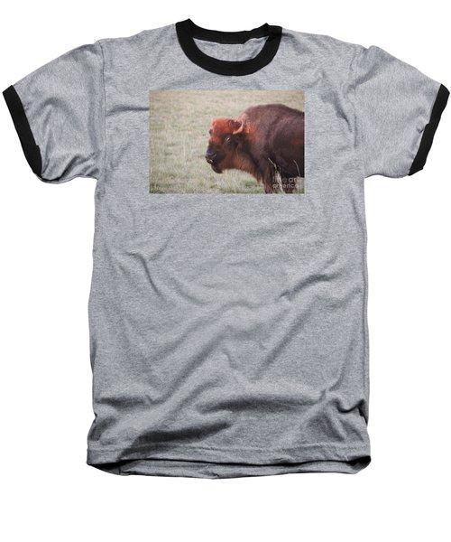 Eye To Eye Baseball T-Shirt by Yumi Johnson