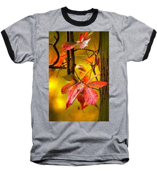 Baseball T-Shirt featuring the photograph Fall Colors by Eduard Moldoveanu