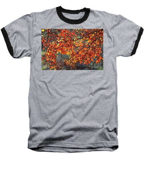 Baseball T-Shirt featuring the photograph Fall Leaves by Nicholas Burningham