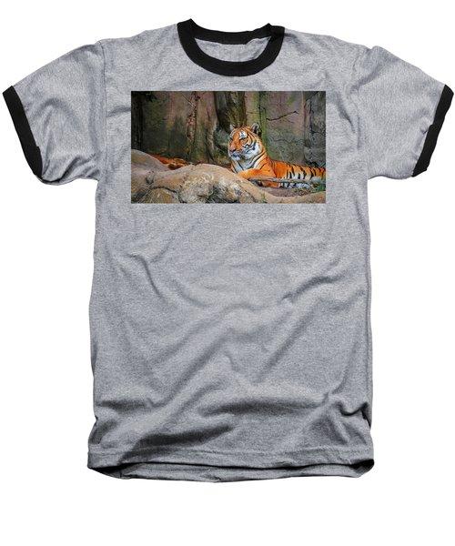 Fort Worth Zoo Tiger Baseball T-Shirt