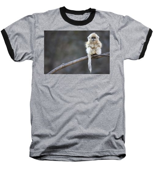 Golden Snub-nosed Monkey Rhinopithecus Baseball T-Shirt