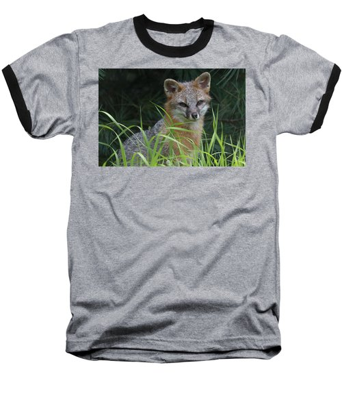 Gray Fox In The Grass Baseball T-Shirt