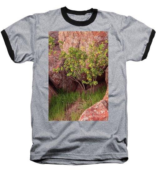 Baseball T-Shirt featuring the photograph Hidden by Iris Greenwell
