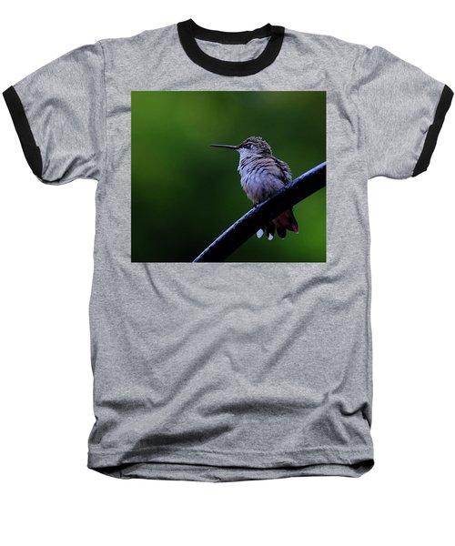 Hummingbird Portrait Baseball T-Shirt