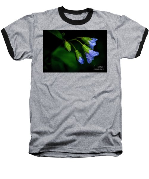 Baseball T-Shirt featuring the photograph Jacobs Ladder by Thomas R Fletcher