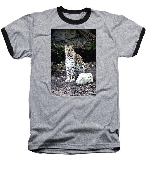 Leopard Baseball T-Shirt by Janice Spivey