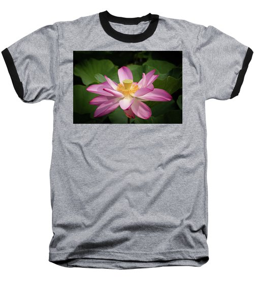 Lotus Baseball T-Shirt