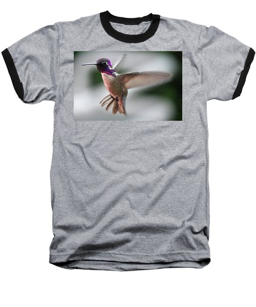 Male Anna's In Flight Baseball T-Shirt