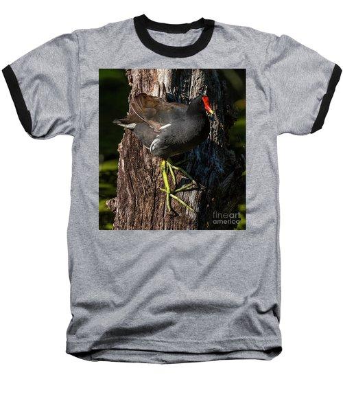 Moorhen Baseball T-Shirt