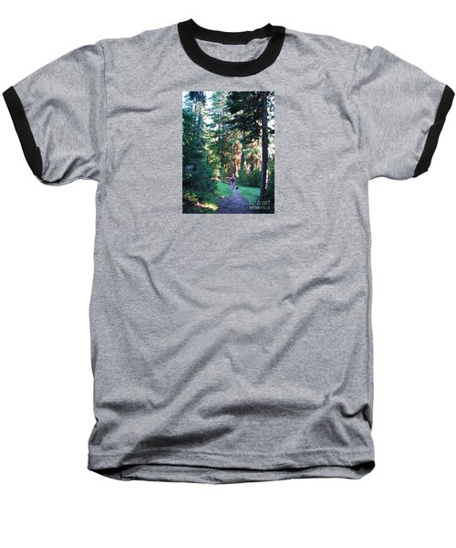 On A Hike Baseball T-Shirt by Michele Penner