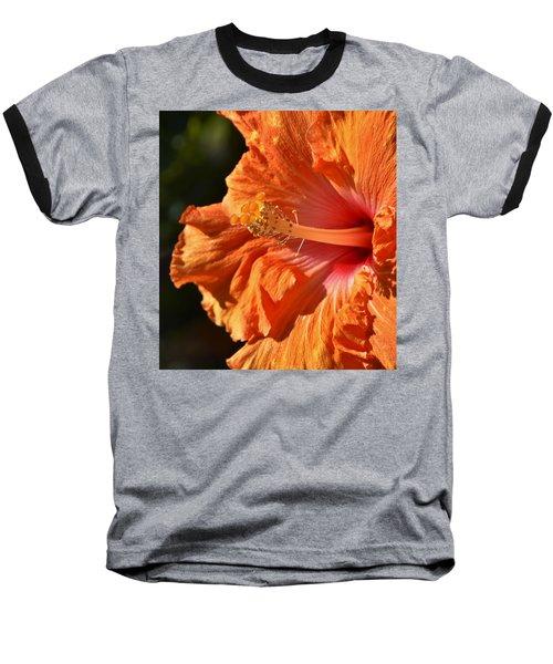 orange Hibiscus blossom Baseball T-Shirt by Werner Lehmann