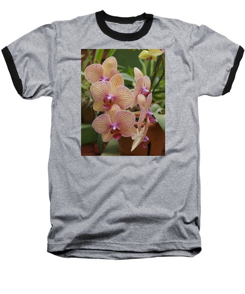 Orchid Baseball T-Shirt by Christian Zesewitz