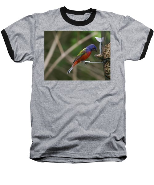 Painted Bunting Baseball T-Shirt