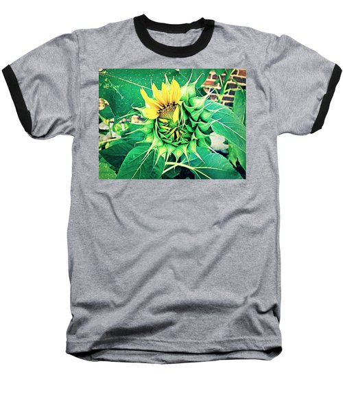 Peeping Sunflower Baseball T-Shirt