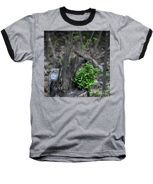 Baseball T-Shirt featuring the photograph Persistence by Skip Willits