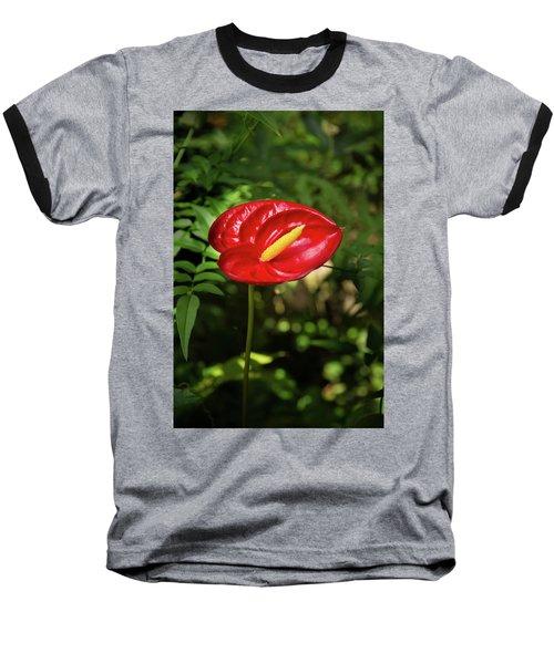 Red Anthurium Flower Baseball T-Shirt