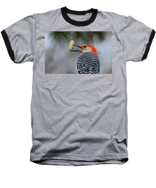 Red-bellied Woodpecker Baseball T-Shirt by Diane Giurco