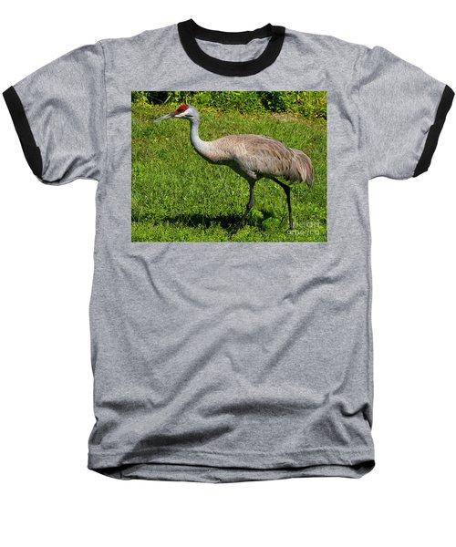 Sand Hill Crane Baseball T-Shirt