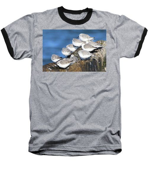 Sanderling Westhampton New York Baseball T-Shirt by Bob Savage