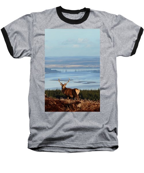 Stag Overlooking The Beauly Firth And Inverness Baseball T-Shirt
