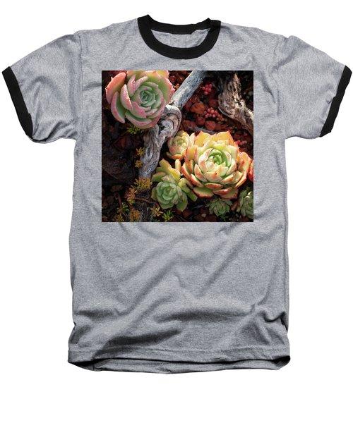 Succulents Baseball T-Shirt