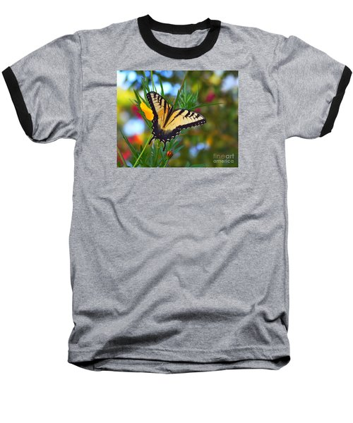 Swallowtail Butterfly Baseball T-Shirt