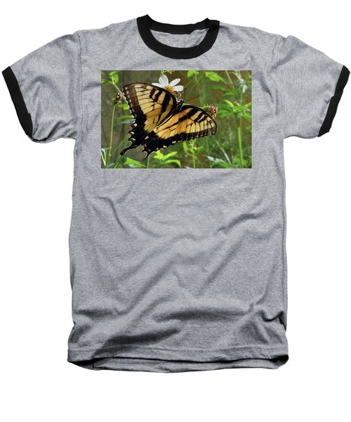 Tiger Swallowtail Baseball T-Shirt