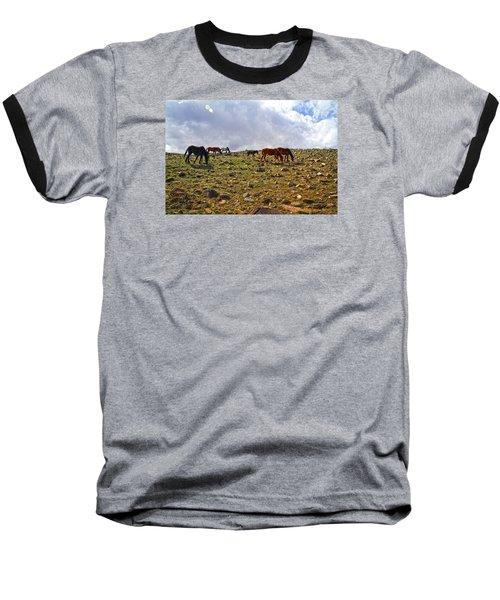 Wild Mustang Herd Baseball T-Shirt