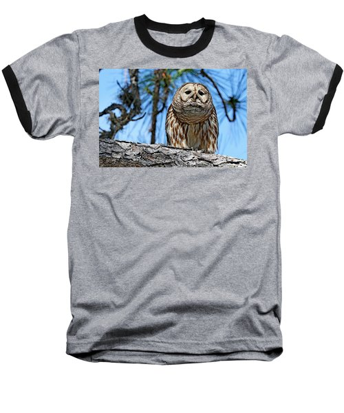 Wise Owl Baseball T-Shirt