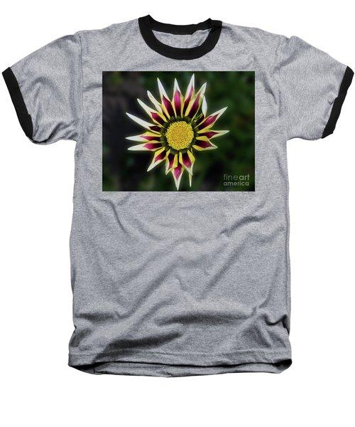 Baseball T-Shirt featuring the photograph Nice Gazania by Elvira Ladocki
